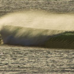 surf the azores with us