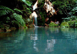 Caldera Velha Azores